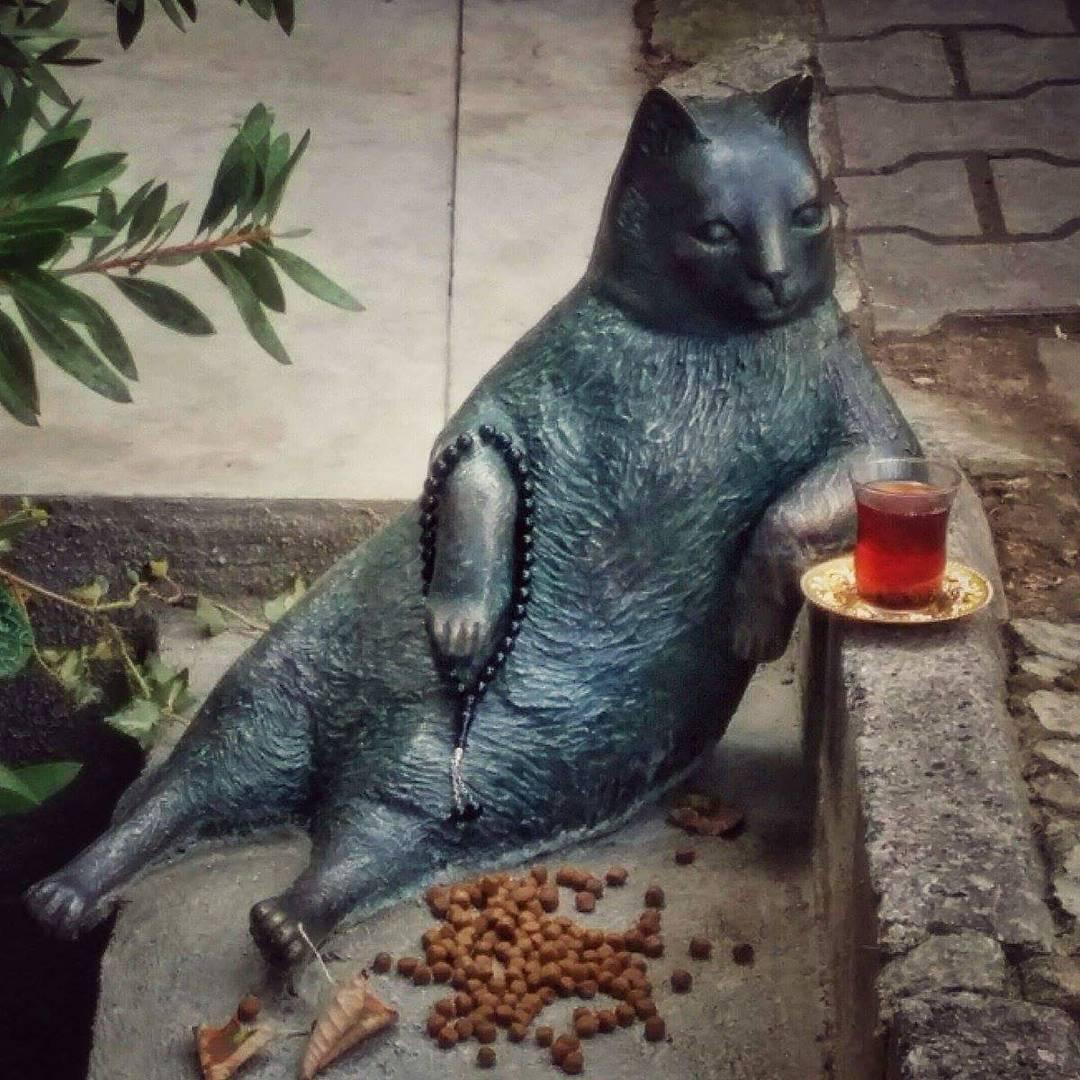 Tombili, il gatto star di Instanbul ora ha la sua statua