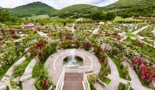 Vacunae Rosae: il giardino di rose nella Sabina, regno di mitologia e meditazione