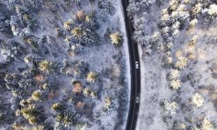 Dalle spiagge della Sardegna ai nidi d'aquila in Siberia: la natura vista dai droni