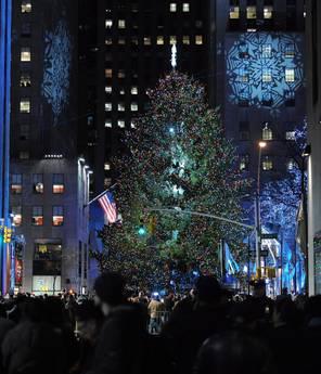 Natale, gli alberi più bizzarri del mondo