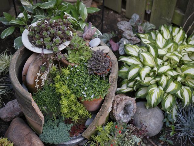 Recuperare i vasi rotti per creare dei mini giardini for Piccoli giardini rocciosi